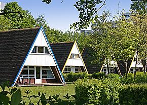 Sterne Hotel  Dres